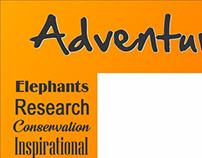 Adventures With Elephants Scenic View