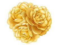 OMO_Flower Illustration KV   2019