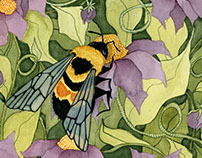Rusty Patched Bumblebee Conservation Illustration