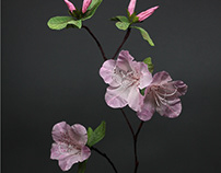 Various Paper Flowers
