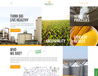 GrainSpan Website Design
