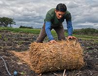 Fotografías Biomanto, producto agrícola