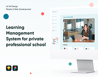 Learning Management System for professional school