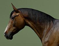 LowPoly Horses