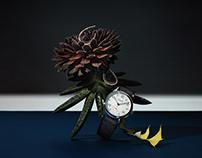 MODERN WEEKLY | watch&jewelry