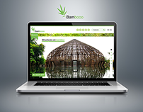Logo + website - Bambooo