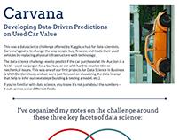 Data Science- Sample Portfolio Entry