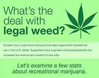 Marijuana Legalization Infographic