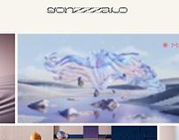Gonzalo Miranda - Website
