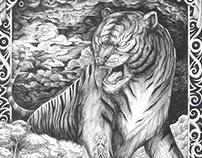 The Tiger Samarinda - Drawing