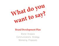 DoDo Brand Development Plan