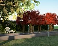 My 3D renders