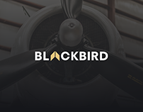 Blackbird – Design for Aircraft's Landing Page