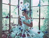 A Spirit of lost butterflies