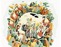 Skull & Fynbos
