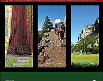 Sequoia & King's Canyon National Park - Website Design