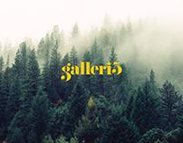 Galleri5 - Logo design & Branding