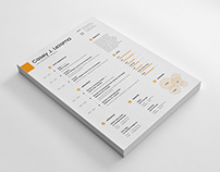 Free Simple Timeline Resume Template
