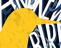 Dream Gigs Illustrated - Andrew Bird