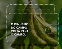 Cocamar - Pagamento de Dividendos