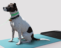 Pet Paws sanitizing mat