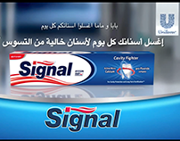 TVC Signal Egypt