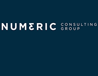 Website Numeric Consulting Group