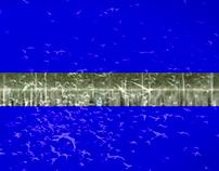 Disparu / Paysage