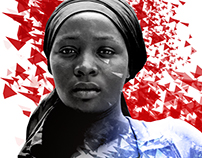 Boko Haram, 2017