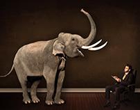 Man and Elephant retouching