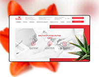 SUDA - website