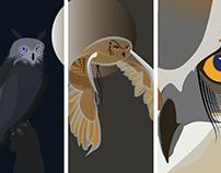 Owl Tryptic