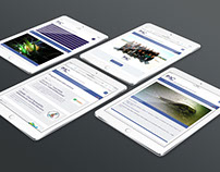 IMC - International Marine Centre web site