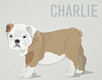 Bulldog Puppy Illustration