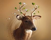 OH MY DEER! How to create easy Photoshop dispertion