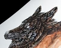 Canis / Aquila.