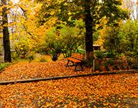 Orange bench.