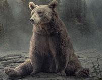 Bear - End of summer