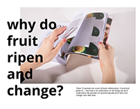 Why Do Fruit Ripen and Change?