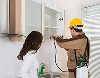 Pest Control Services in Akron OH