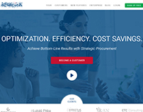 Web Design for a Consulting Company