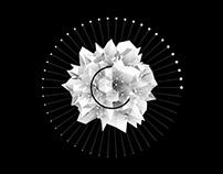 Planetario - Live Show