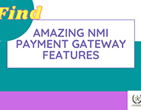 Amazing NMI Payment Gateway Features