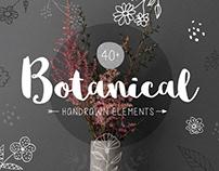 Botanical Handrown Elements by Anton Blinkov