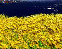 image-Landscape(Spring is coming)