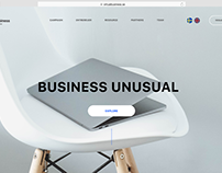 Virtual Business - a startup