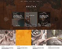 Relive - Storytelling WordPress Blog Theme