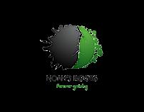 Noah's Roots