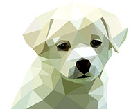 Low Poly Dog. Polygonal Colorful Vector Illustration.