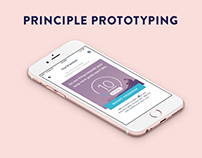 Principle Prototyping